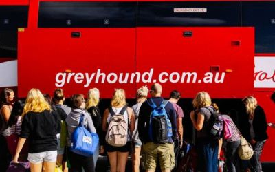 Greyhound Bus Pass: Brisbane to Cairns or Reverse